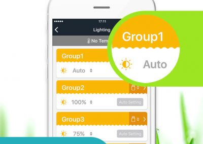 6-Lighting-Groups