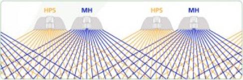 HPS MH