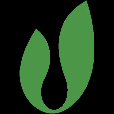 Nanolux logo